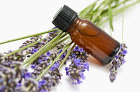 Where should I buy my essential oils?